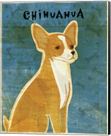 Chihuahua (red) Fine-Art Print