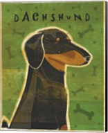 Dachshund (black and tan) Fine-Art Print