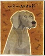 Weimaraner Fine-Art Print