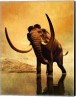 Wooly Mammoth and Sunset Fine-Art Print