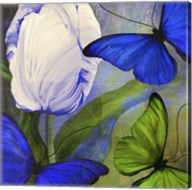 Morphos One Fine-Art Print
