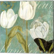 White Tulips I Fine-Art Print