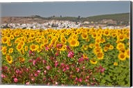 Spain, Andalusia, Bornos Sunflower Fields Fine-Art Print