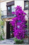 Spain, Granada The entrance of Hotel America Fine-Art Print