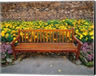 England, Northumberland, Hexham, Park bench Fine-Art Print