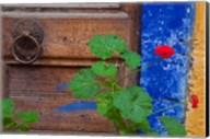 Geraniums and old door in Chania, Crete, Greece Fine-Art Print