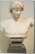 Antinous Bust, Statue, Athens, Greece Fine-Art Print