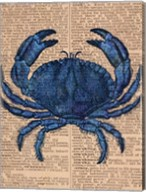 Vintage Crab Fine-Art Print
