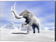 Large Mammoth Walking Slowly on the Snowy Mountain Fine-Art Print