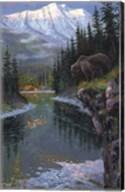 Southfork Grizzly Fine-Art Print