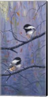 Pair of Chickadees Fine-Art Print