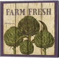 Farm Fresh Artichoke Fine-Art Print