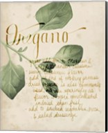 Herb Study III Fine-Art Print
