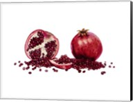 Watercolor Pomegranate Fine-Art Print