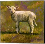 Leap Year Lamb Fine-Art Print