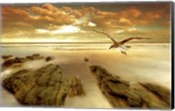 Soft Sunrise on the Beach 4 Fine-Art Print