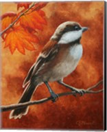 Autumn Chickadee Fine-Art Print
