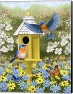 Bluebird Garden Home Fine-Art Print