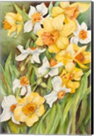 Early Spring Flowers Fine-Art Print