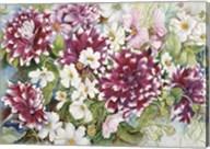 Burgundy Dahlias & Cosmos Fine-Art Print