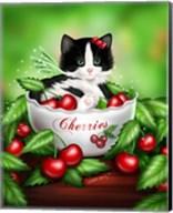 Cherry Kitten Fine-Art Print