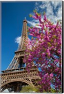 Pink Tree by the Eifel Tower Fine-Art Print