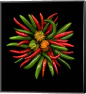 Hot Peppers 1 Fine-Art Print