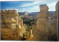 Bryce Canyon B Fine-Art Print