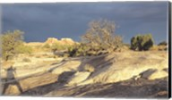 Canyonland 14 Fine-Art Print