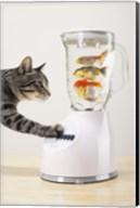 Cat's Fish Shake Fine-Art Print