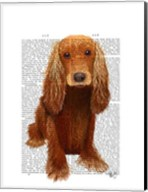Cocker Spaniel Plain Fine-Art Print