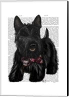 Scottish Terrier and Bow Fine-Art Print