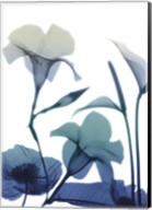 Morning Bloom 1 Fine-Art Print