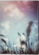 Grass Stalks With Border Fine-Art Print