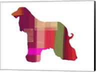 Afghan Hound 2 Fine-Art Print