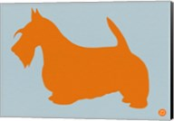 Scottish Terrier Orange Fine-Art Print