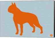 Boston Terrier Orange Fine-Art Print