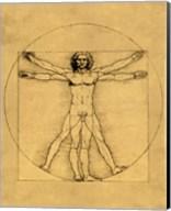Proportions of the Human Figure - Vitruvian Man Fine-Art Print