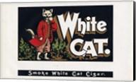 White Cat Fine-Art Print