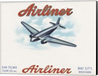 Airliner Fine-Art Print