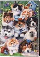 Kittens & Puppies In The Garden Fine-Art Print
