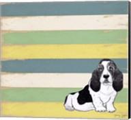 Basset Hound 2 Fine-Art Print