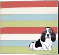 Basset Hound 3 Fine-Art Print