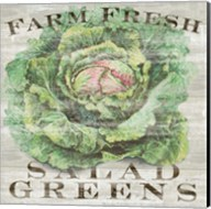 Farm Fresh Greens Fine-Art Print