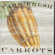 Farm Fresh Carrots Fine-Art Print