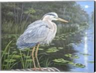Blue Heron Moon Fine-Art Print