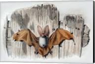 Bat II Fine-Art Print