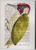 Green Woodpecker Fine-Art Print