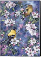 Gold Finch & Blossoms Fine-Art Print