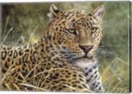 Leopard Portrait Fine-Art Print